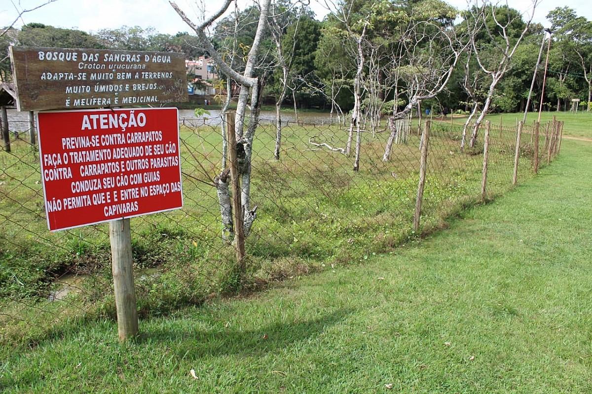 Cerca no Horto Florestal evita contato entre capivaras e frequentadores da reserva