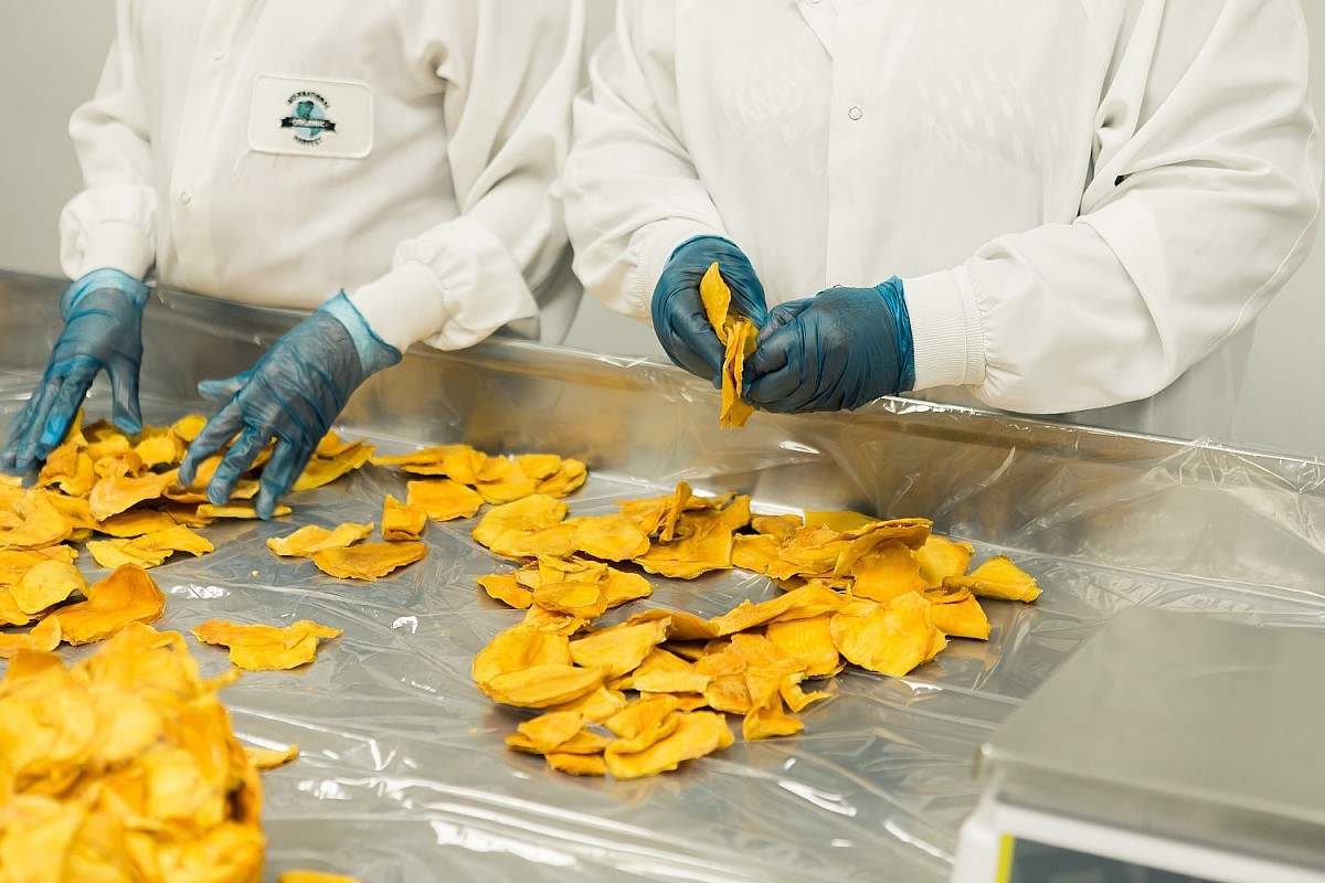 Curso gratuito ensina boas práticas na fabricação de alimentos