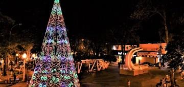 Árvore de Natal gigante é atração no Largo São João