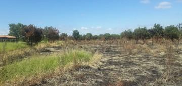 Secretaria intensifica fiscalização contra queimadas em Avaré