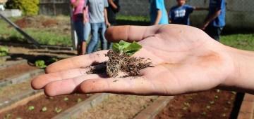 Inscrições abertas para o Jovem Agricultor do Futuro