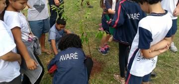 Alunos e moradores plantam mudas em praça no Bairro Alto