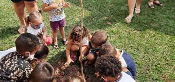 Dia da Árvore é celebrado com plantio de mudas