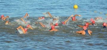 Natação avareense é vice no Paulista de Maratonas Aquáticas